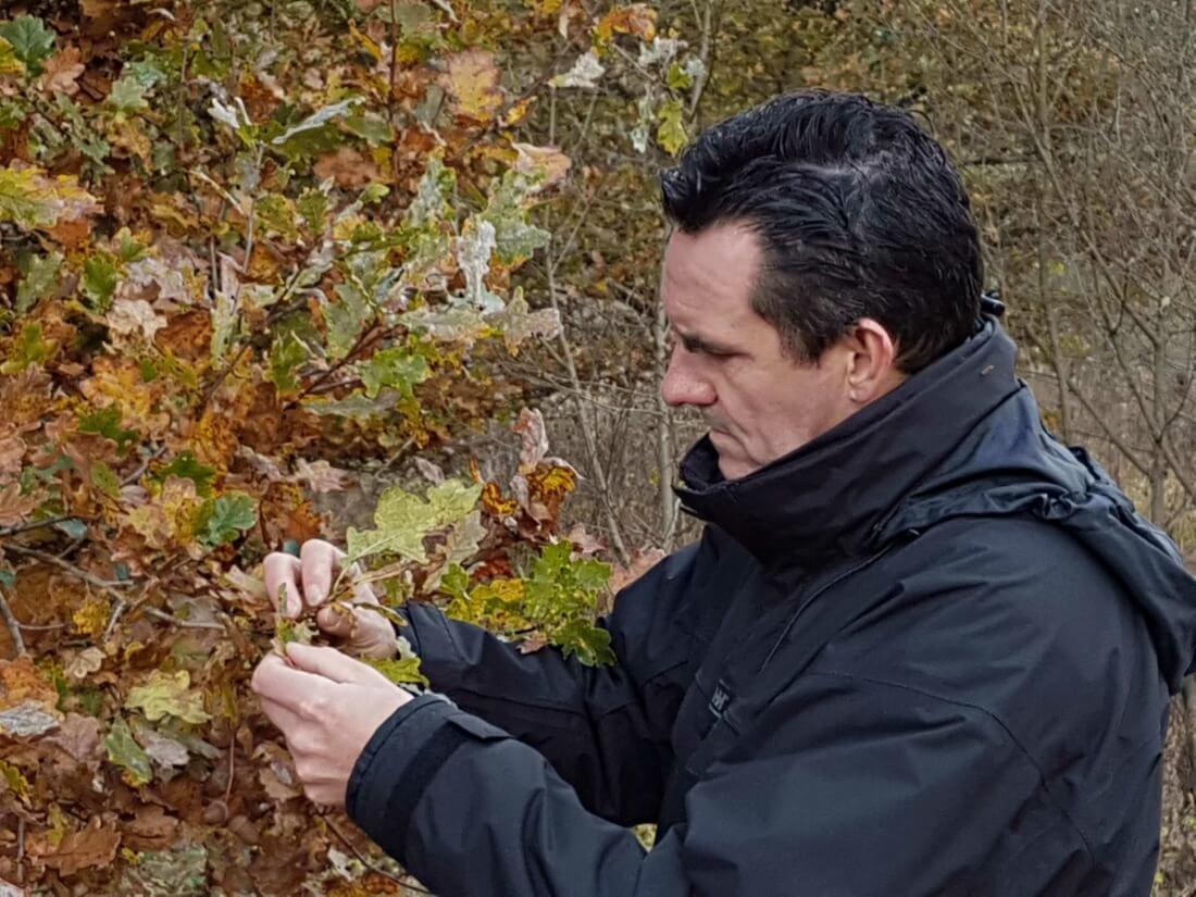 Contact Bert Janssens - b-Tree Boomverzorging BVBA